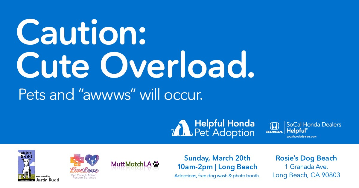 Helpful Honda Adoption Fair
